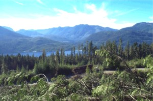 View of Woss, BC